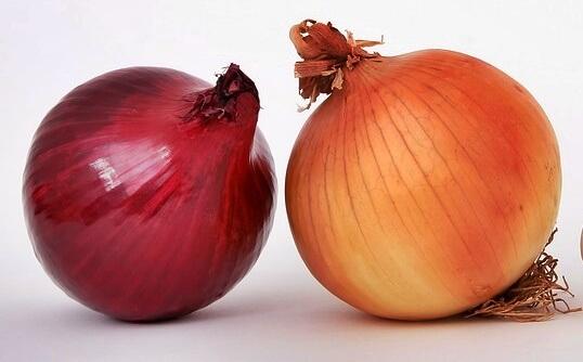 cebolla rojo y cebolla blanca