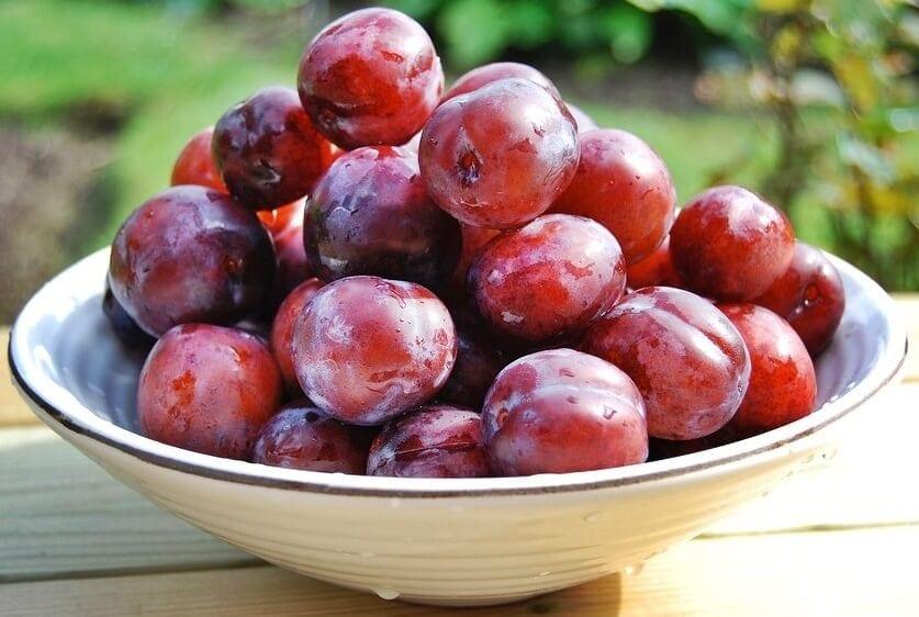 plato con ciruelas, frutas