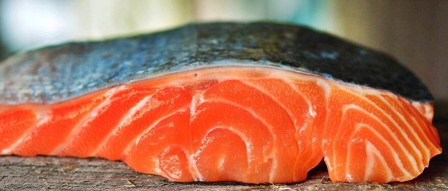 pescados y mariscos, salmón