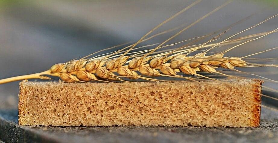 trigo y rodaja de pan